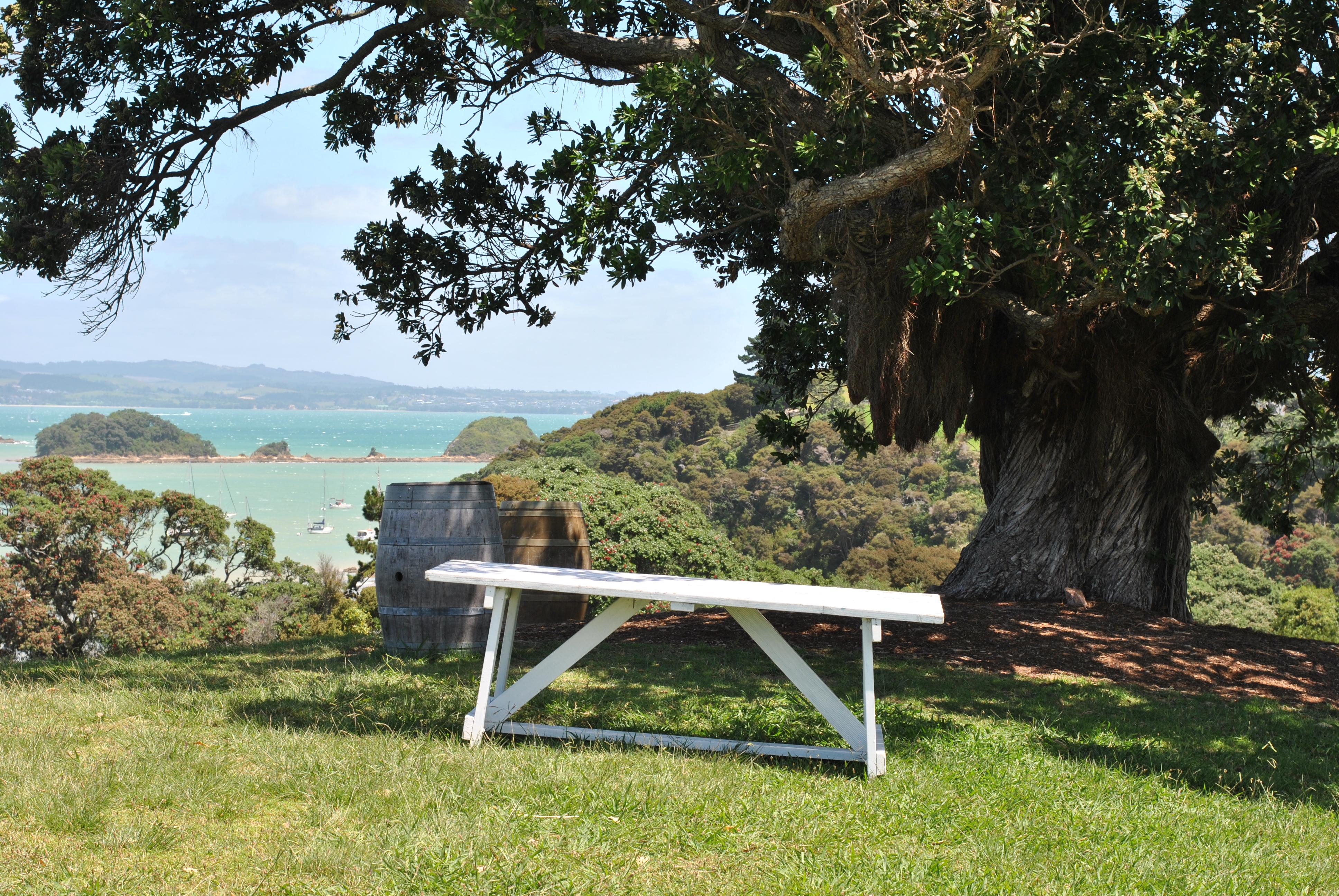You are currently viewing Kia Ora! Wein und Strände auf Waiheke Island [NZ]