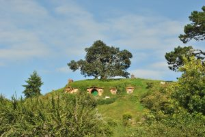 Hobbiton Filmset und die Halbinsel Coromandel [NZ]