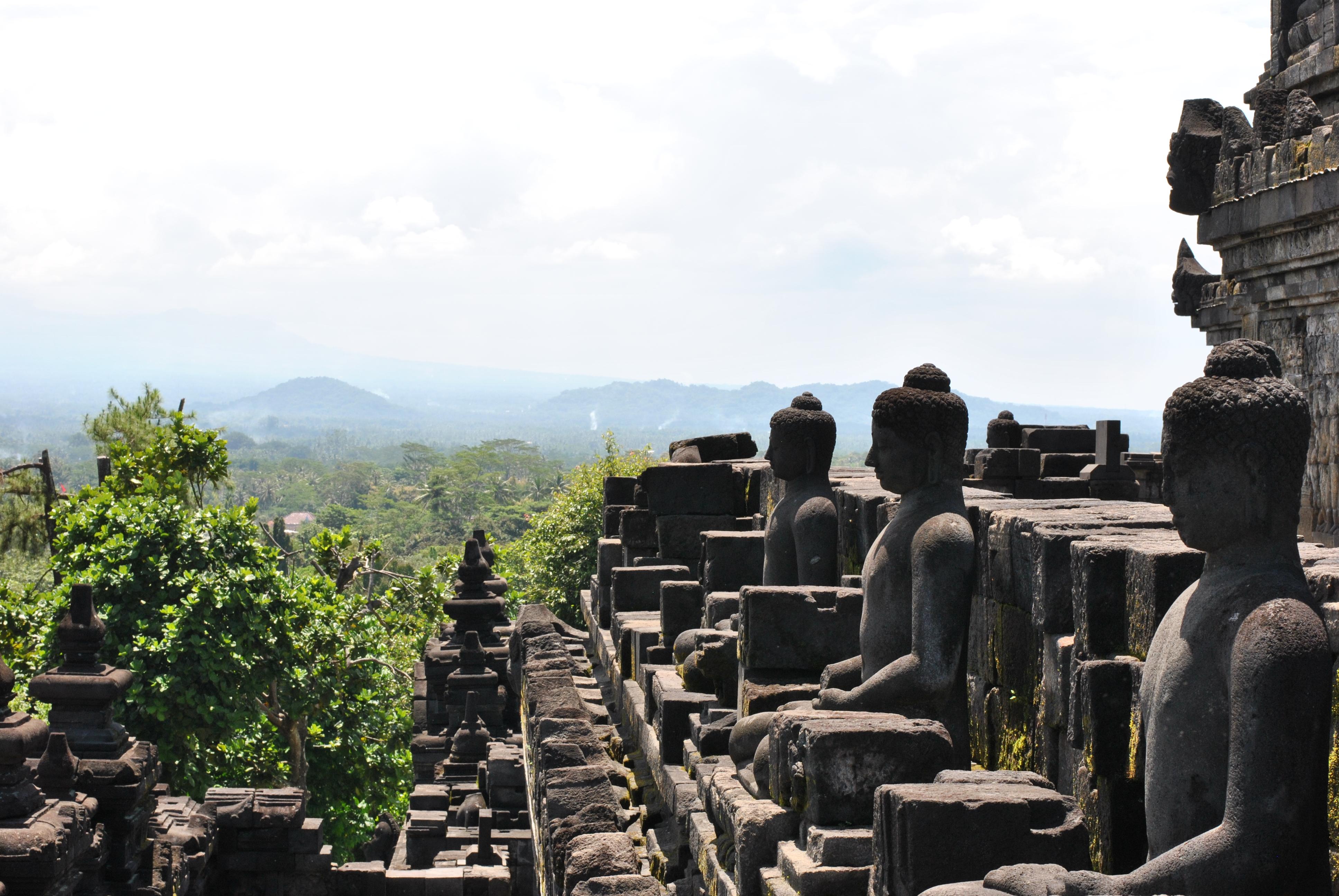 Gewaltiger Tempel Borobudur und Katzenkaffee [INDO]